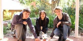 MiRo with Curtin students