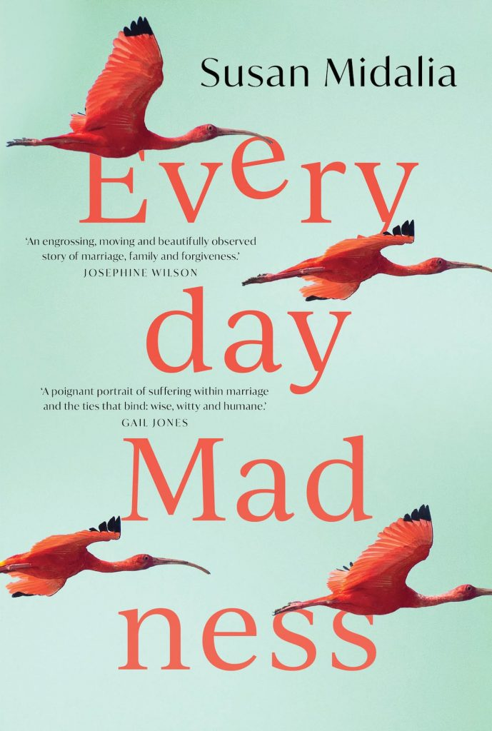 Everyday Madness book cover