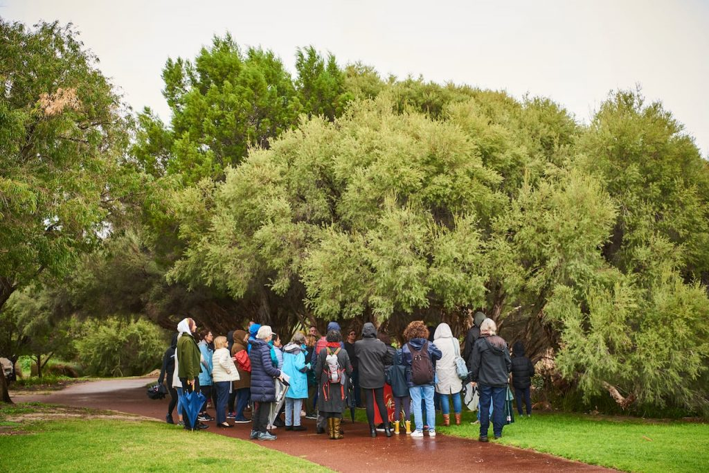 Finding our about local plants on a tour